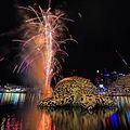 Alphie Fireworks! 01.jpg