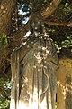 Alter katholischer Friedhof Dresden 2012-08-27-9934.jpg