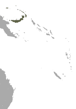 Andersen's Bare-backed Fruit Bat area.png