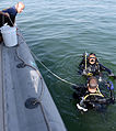 Anti-Terrorism Force Protection inspection dive 130124-N-PF210-080.jpg