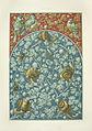 Anton Seder Bleeding Heart Snails.jpg