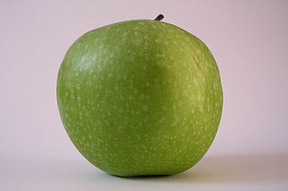 Apfel 06.jpg