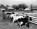 Arlington State College farm (10013113).jpg