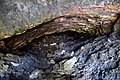 Astangu VI tunnel (02) Esimene sissepääs.jpg