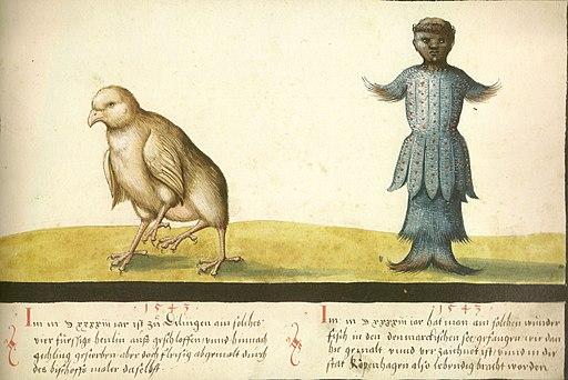 Augsburger Wunderzeichenbuch — Folio 145- Wundersames Huhn und wundersamer Fisch 1543