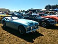 Austin Healey 3000 & Chevrolet Corvette Stingray (24861040097).jpg