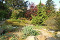 Autumn view - Brooklyn Botanic Garden - Brooklyn, NY - DSC07963.JPG