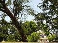 Avinangudi Viswanatha Swami Temple Tower.jpg