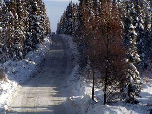Winter road in northern British Columbia.