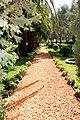 Baha'i Gardens special view.jpg