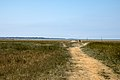 Baie de Cancale à Vivier-sur-Mer 01.jpg