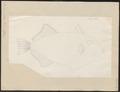Balistes vidua - 1700-1880 - Print - Iconographia Zoologica - Special Collections University of Amsterdam - UBA01 IZ15400039.tif