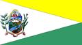 Bandera Sosa Barinas.PNG