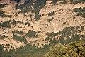 Bardonnex, Switzerland - panoramio (86).jpg