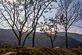 Basundhara Park - panoramio.jpg