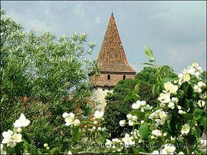 Sulejów Abbey - Image: Baszta opacka
