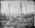 Battlefield of Resaca, Ga., 1864 - NARA - 528893.tif