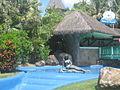Belek Beach Resort G Ef Bf Bdnstig Buchen