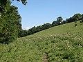 Below the Ridge - geograph.org.uk - 333622.jpg
