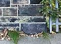 Benchmark on Harrison Drive bridge.jpg