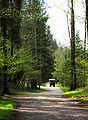 Berchtesgaden cart.jpg