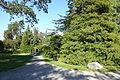 Bergianska trädgården - Stockholm, Sweden - DSC00491.JPG