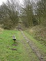 Bestwood Country Park - Colliers Pad - geograph.org.uk - 658351.jpg