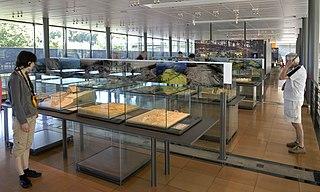 320px-Bibracte_Musee_Salle_des_maquettes dans Yonne