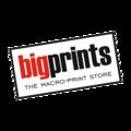 Big Prints - Logo.png