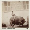 Bild från familjen von Hallwyls resa genom Egypten och Sudan, 5 november 1900 – 29 mars 1901 - Hallwylska museet - 91595.tif