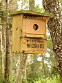 Birdhouse at Santa Eugenia.jpg