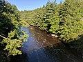 Blackwater Falls State Park WV 13.jpg