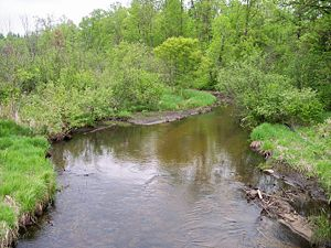 Blueberry River (Minnesota) - The Blueberry River in Blueberry Township in 2007