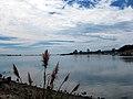 Bodega Bay (08-2009).jpg
