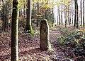 Borne Saint-Desle, appelée menhir de Chagey.jpg