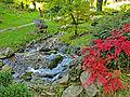 Botanička bašta Jevremovac, Beograd - Japanski vrt 31.jpg