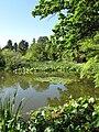 Botanischer Garten See1.jpg