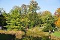 Botanischer Garten der Universität Zürich 2011-10-11 14-41-50.JPG