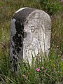 Boundary marker on Kingston Great Common, New Forest - geograph.org.uk - 502650.jpg