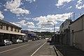 Bowral NSW 2576, Australia - panoramio (55).jpg