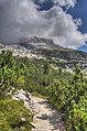 Brenta - Ragoli (TN) Italia - 17 Agosto 2012 - panoramio (1).jpg