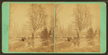 Bridge across Landsdown (Lansdowne) Drive, Fairmount Park, Phila, from Robert N. Dennis collection of stereoscopic views.png