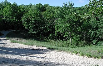 1922 Bridgman Convention - General area of the 1922 Bridgman Convention as it appeared in 2005.