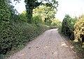 Bridleway - geograph.org.uk - 1012937.jpg
