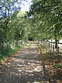 Bridleway at Clifford Chambers - geograph.org.uk - 56313.jpg