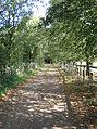 Bridleway at Clifford Chambers - geograph.org.uk - 56313.jpg