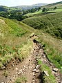 Bridleway descends to Willykay Clough - geograph.org.uk - 1482296.jpg