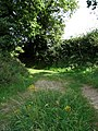 Bridleway from The Tower to Briningham - geograph.org.uk - 550874.jpg