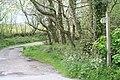 Bridleway leading to Botrea - geograph.org.uk - 1297103.jpg