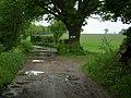 Bridleway to Snape - geograph.org.uk - 177114.jpg